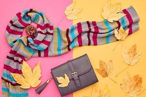 Fall Fashion Minimal Set. Leaves
