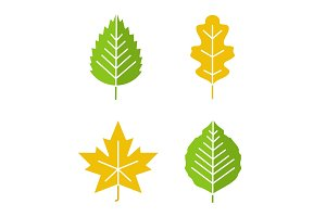 Leaves glyph color icon set