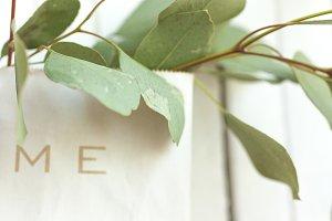 Eucalyptus leaves  in paper bag