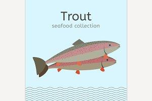 Trout Image