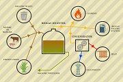 Biogas infographic