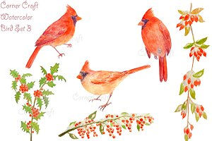 Watercolor Cardinals and Berries
