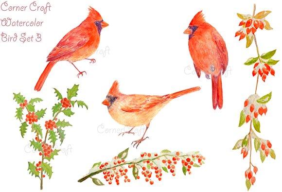 Watercolor Cardinals and Berries
