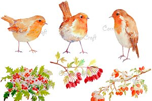 Watercolor Robins and Berries