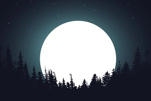forest night moon