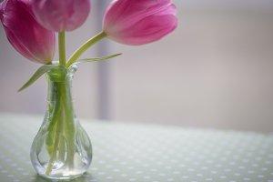 Tiny Vase w/Tulips