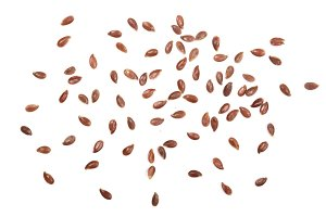 flax seeds isolated on white background. Top view