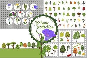 Botanic set