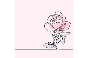 Drawing of beautiful rose flower