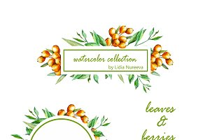 Berries and leaves autumn design