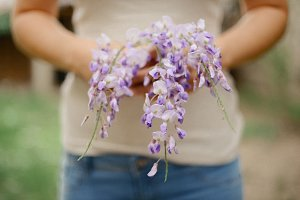 Woman holding wisteria flowers