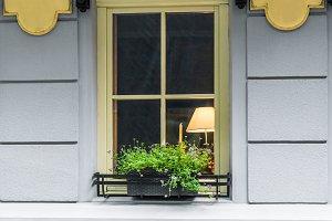 Window decorated flowerpot