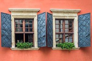 Windows decorated flowerpot