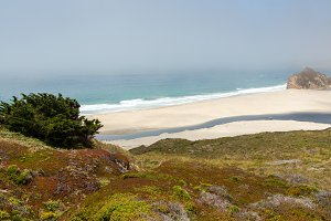 Beach on Big Sur