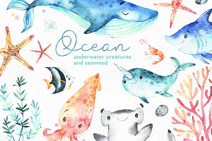 Ocean. Underwater collection.