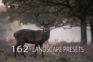 162 Landscape Presets Bundle