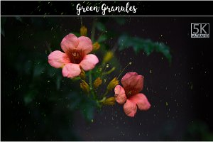 5K Green Granules Overlays