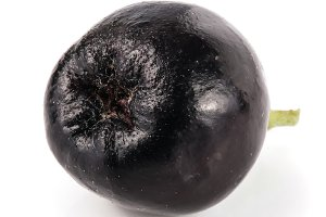 Chokeberry isolated on white background. Black aronia berries