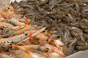 Fresh prawns in a local market
