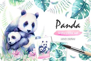 Panda Watercolor set