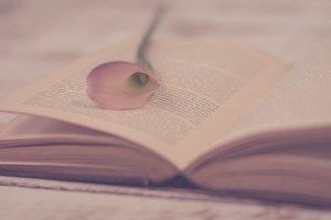 Calla Lily and Book