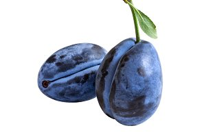 Two dark blue plums  isolated on white background