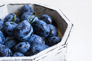 Dark blue plum in white tray on a white background closeup