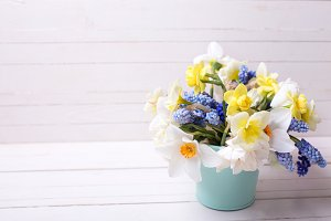 Bright spring flowers