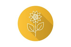 Sunflower flat linear long shadow icon