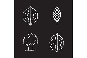 Forestry chalk icons set