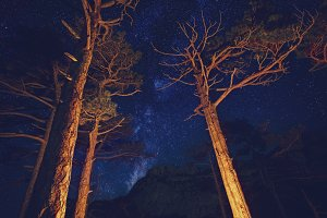 Star night in the mountains