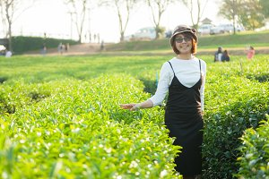 Asian woman in the tea plantation