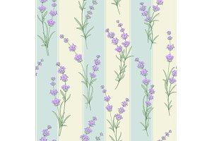 Seamless pattern of Lavender flower.