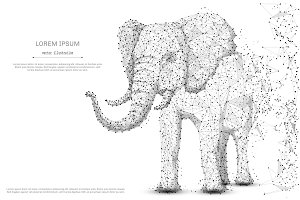 elephant low poly gray