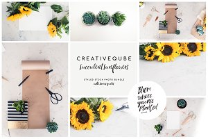 Sunflowers Stock Photo Bundle