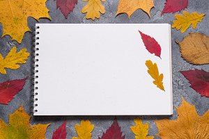 Crafting tools with Autumn leaves