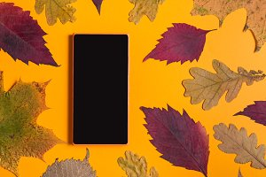 Smart phone with autumn leaves