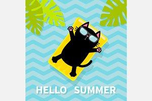 Hello Summer. Cat on water mattress