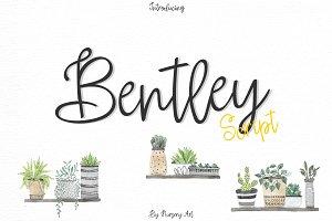 Bentley | Script