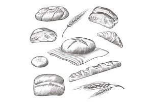 Collection of hand drawn icons of bareky products isolated illustration