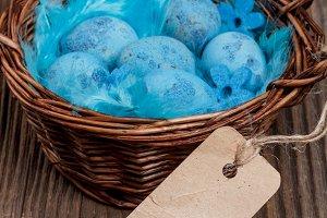 Blue quail eggs