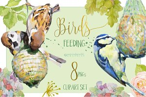 BIRDS FEEDING - Clipart set