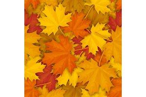 Fallen maple leaves pattern