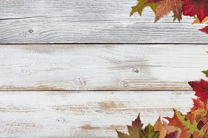 Natural Autumn Holiday Background