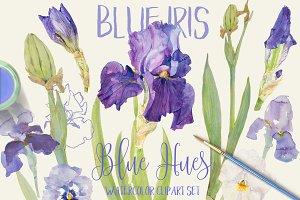 BLUE IRIS - watercolor clipart set