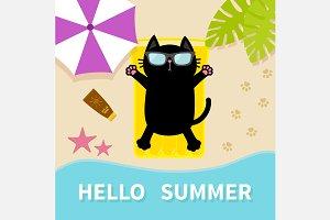 Black cat sunbathing on the beach
