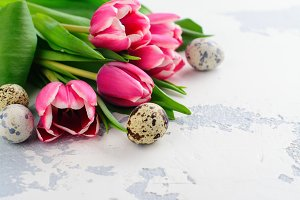 Pink tulips and quail eggs on white background