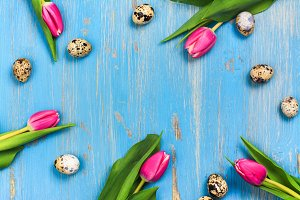 Pink tulips and quail eggs on blue background