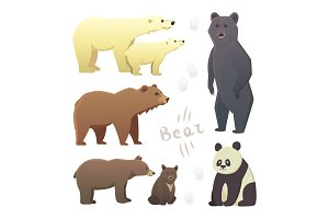 Different cartoon bears