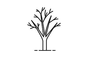 Tree without leaves linear icon